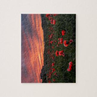 Poppies at Bamburgh  Puzzle/Jigsaw Jigsaw Puzzle