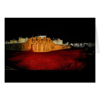 Poppies at the Tower of London - Night Panorama Card