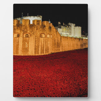 Poppies at the Tower of London - Night Panorama Plaque