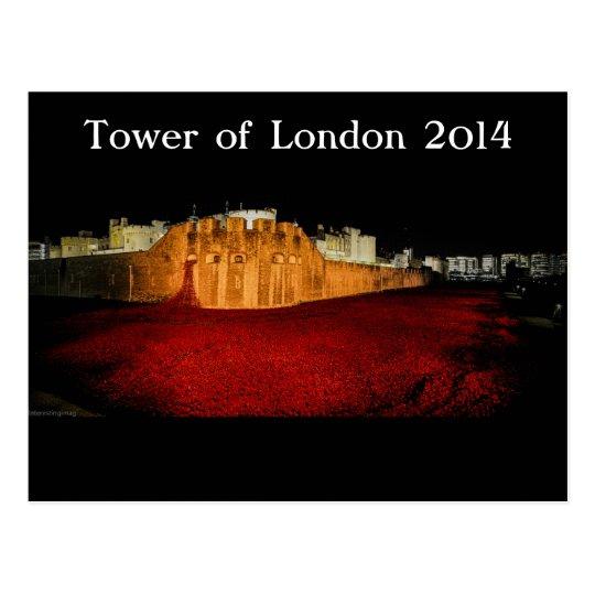 Poppies at the Tower of London - Night