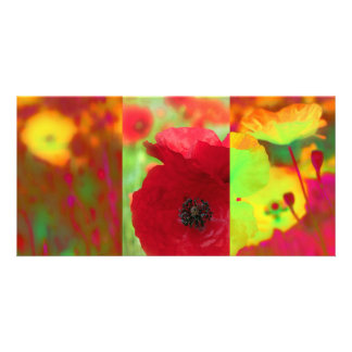 Poppies field photo card template