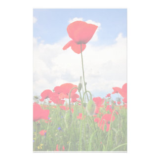 Poppies field stationery