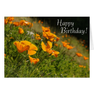 Poppies Happy Birthday Card