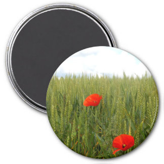 Poppies in a Wheat Field Large Round Magnet