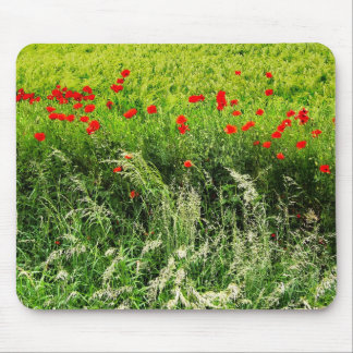Poppies in Summer Mousepad