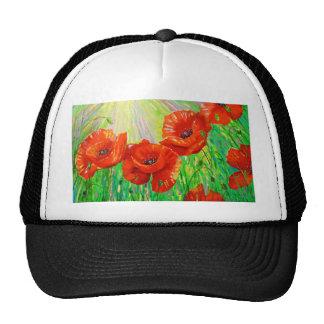 Poppies in sunlight cap