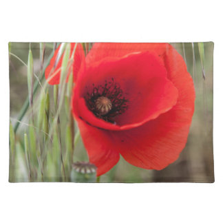 poppies in the garden placemat