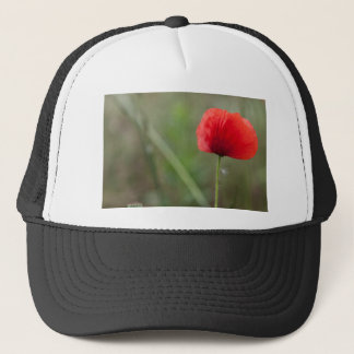 poppies in the garden trucker hat