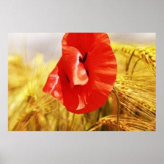 Poppies into the cornfield print