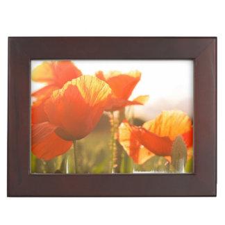 Poppies Memory Box