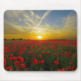 Poppies Mouse Mat