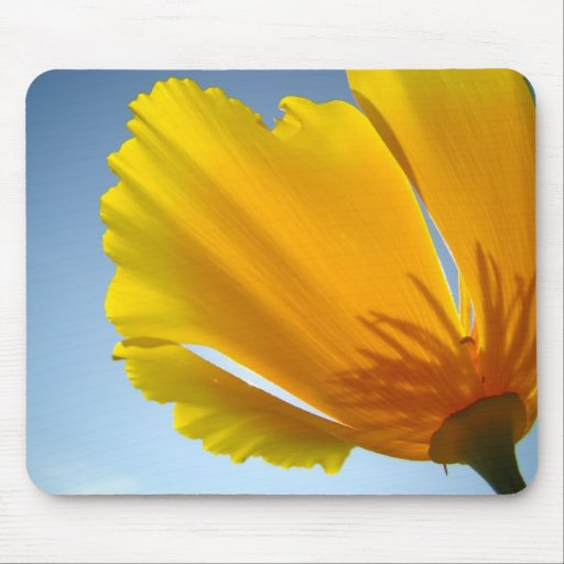 POPPIES MOUSE PADS Poppy Flowers MOUSEPAD
