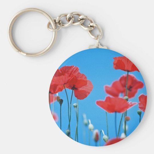 Poppies of Provence Basic Round Button Key Ring