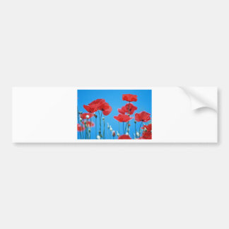 Poppies of Provence Bumper Sticker