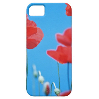 Poppies of Provence iPhone 5 Case