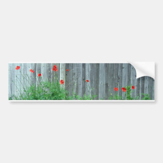 Poppies on a wall bumper sticker