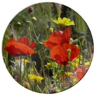 Poppies Porcelain Plate
