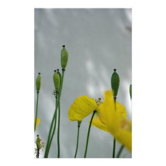 Poppies & shade (1) Stationery