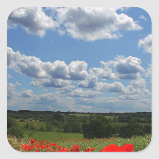 Poppies Square Sticker