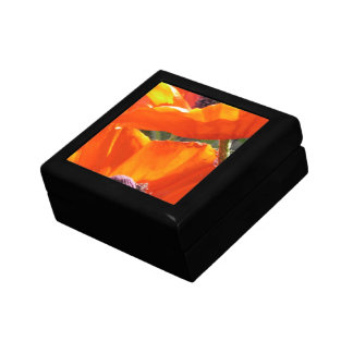 Popping Poppies Gift Box