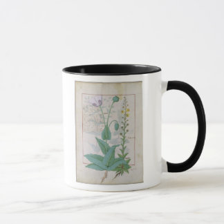 Poppy and Figwort Mug