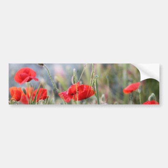 poppy bumper sticker