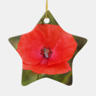 poppy christmas ornament