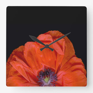 """Poppy-clock""! Wallclock"