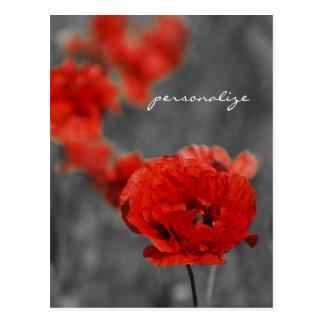 Poppy Comet Postcard