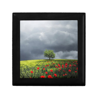 Poppy Field and Cloudy Sky Small Square Gift Box