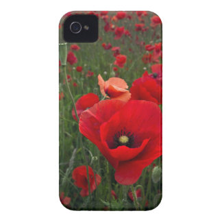 Poppy Field BlackBerry Bold Case-Mate Barely There Case-Mate iPhone 4 Cases