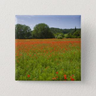 Poppy field, Chiusi, Italy 15 Cm Square Badge