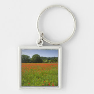 Poppy field, Chiusi, Italy Key Ring