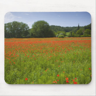 Poppy field, Chiusi, Italy Mouse Mat