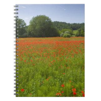 Poppy field, Chiusi, Italy Notebook