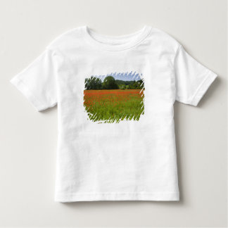 Poppy field, Chiusi, Italy Toddler T-Shirt