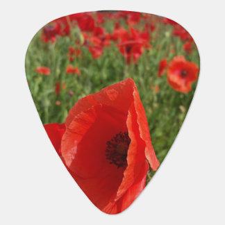 Poppy Field Guitar Pick