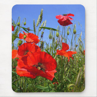 POPPY FIELD ~ Mousepad # 6