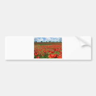 Poppy Fields Bumper Sticker