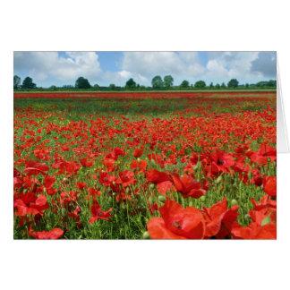 Poppy Fields Card
