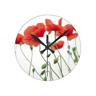 poppy-flower clock