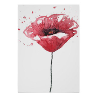 Poppy flower, watercolor poster