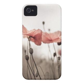 Poppy Flowers iPhone 4 Case