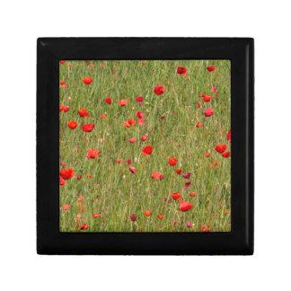 poppy in spring gift box