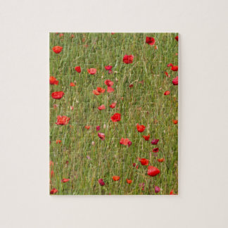 poppy in spring jigsaw puzzle