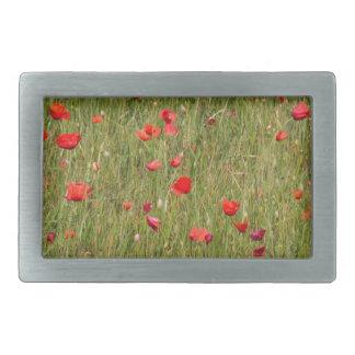 poppy in spring rectangular belt buckles