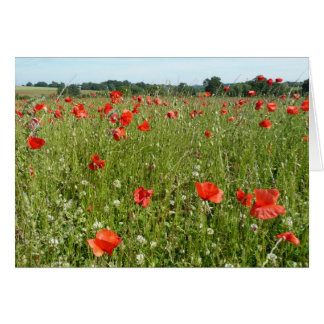 Poppy Meadow Card