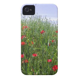Poppy Meadow Nature Blackberry Bold Case