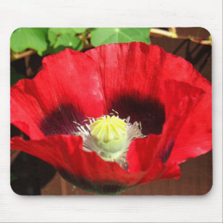 Poppy Mouse Mat