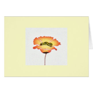 Poppy notecard. card